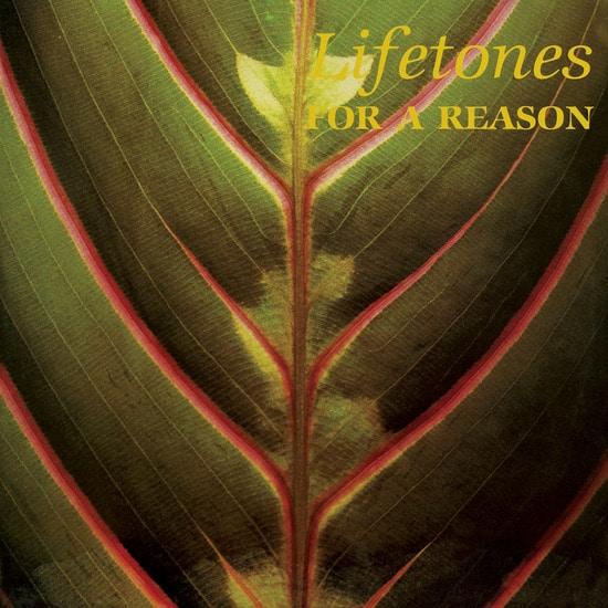 Lifetones le projet de Charles Bullen (This Heat) en précommande