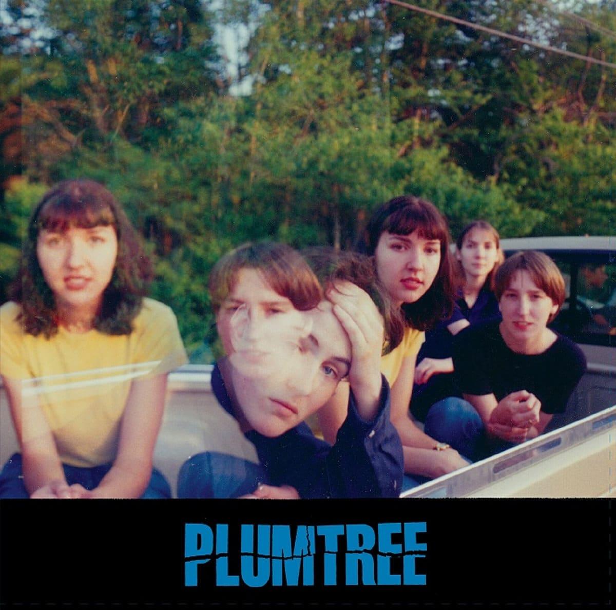 Réédition vinyle des albums de Plumtree