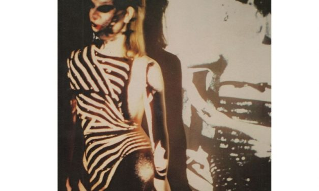 Mannequin Records continue de rééditer Din A Testbild