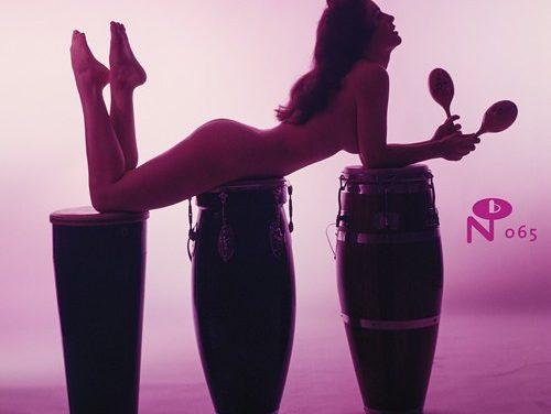 Près de 50 morceaux rares d'Exotica avec Technicolor Paradise: Rhum Rhapsodies & Other Exotic Delights