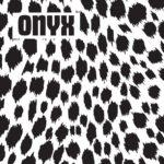 «L'intégrale» des titres d'Onyx, un duo new wave de Boston du début des eigthies