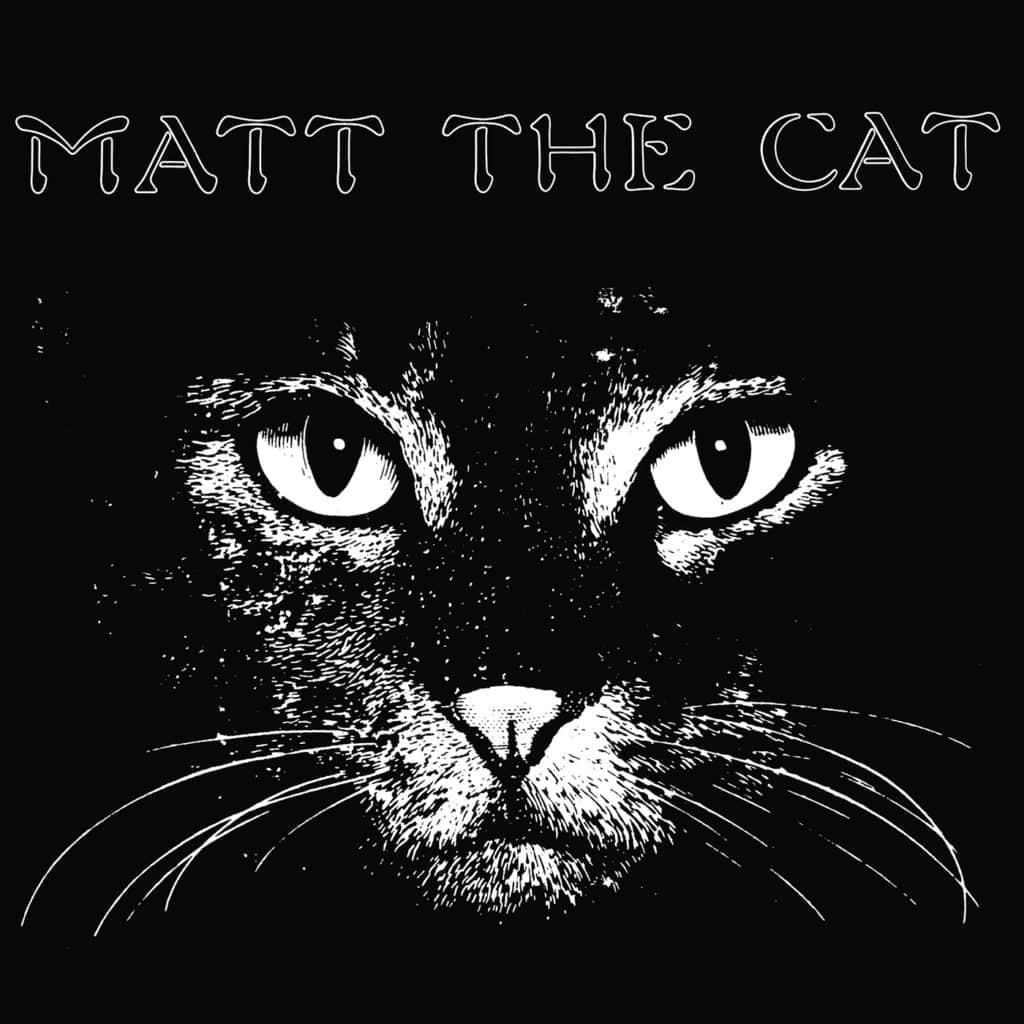 Les deux albums de Matthew Larkin Cassel réapparaissent en vinyle