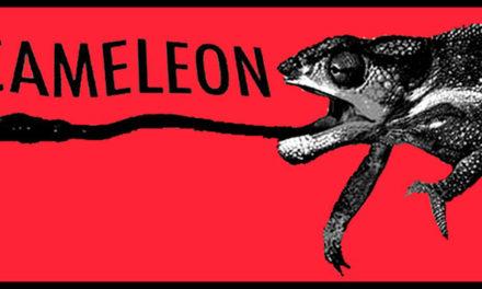 Interview de Claude Picard, le boss du label Cameleon Records, à l'occasion de la sortie de Affection Place et Sealsia