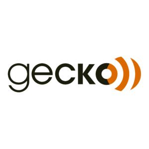 Logo audio gecko