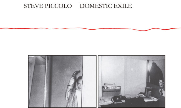 Redécouverte de l'album lo-fi de Steve Piccolo (ex-Lounge Lizards), Domestic Exile